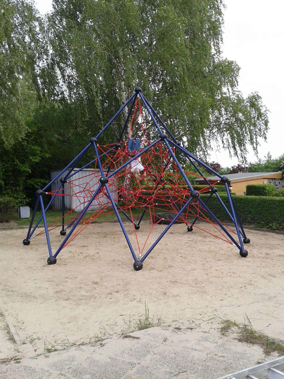 Spinne6l